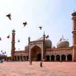 Business Class Flights To Delhi